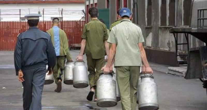 Proiect de lege: Deținuții apți de muncă, obligați să lucreze