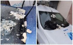 Câtiva arădeni din cartierul Vlaicu au avut o surpriză sâmbătă dimineaţa când şi-au găsit maşinile vandalizate