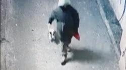 Bărbatul care a spânzurat un câine a fost prins