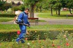 Gospodărirea Comunală Arad angajează! Vezi care sunt posturile disponibile