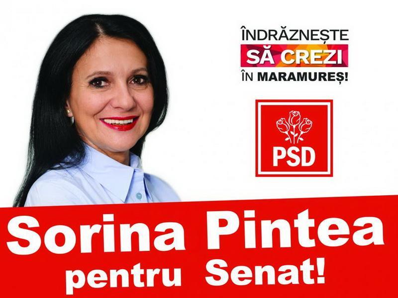 Fostul ministru PSD al sănătăţii Sorina Pintea, reținută pentru 24 de ore de procurorii DNA
