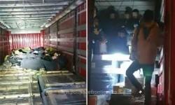 Douăzeci şi unu de cetăţeni din Irak, Egipt și Siria, ascunşi  într-un camion încărcat cu piese auto, depistați la Nădlac II