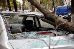 Atenție, arădeni unde parcați! Un copac a căzut peste un autoturism