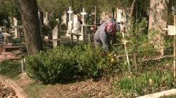 Poți merge la părinți de Paște sau poți merge la cimitir pentru a face curat la morminte? AFLĂ acum răspunsurile și multe altele la întrebările puse de români