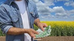 APIA a virat banii în conturile agricultorilor arădeni
