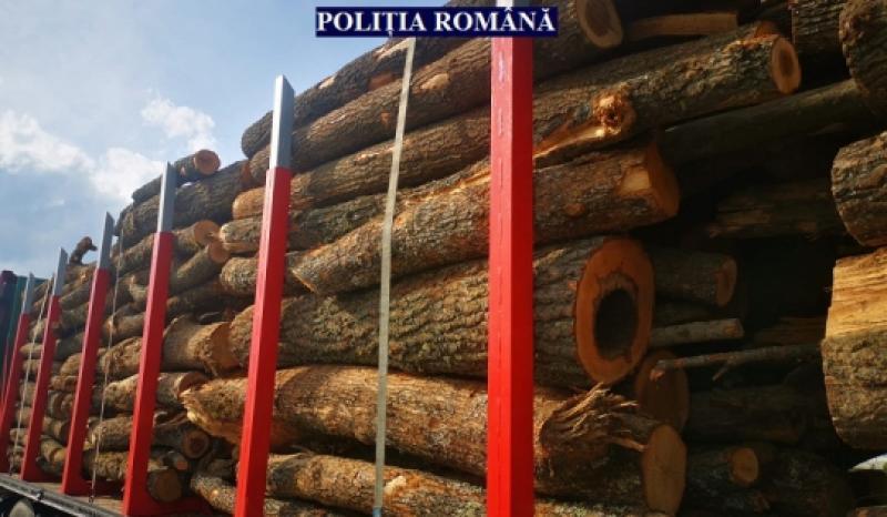 Transport de lemne ilegal, depistat de polițiștii arădeni
