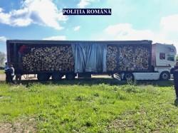 Prins cu un transport ilegal cu lemne, pe DN7