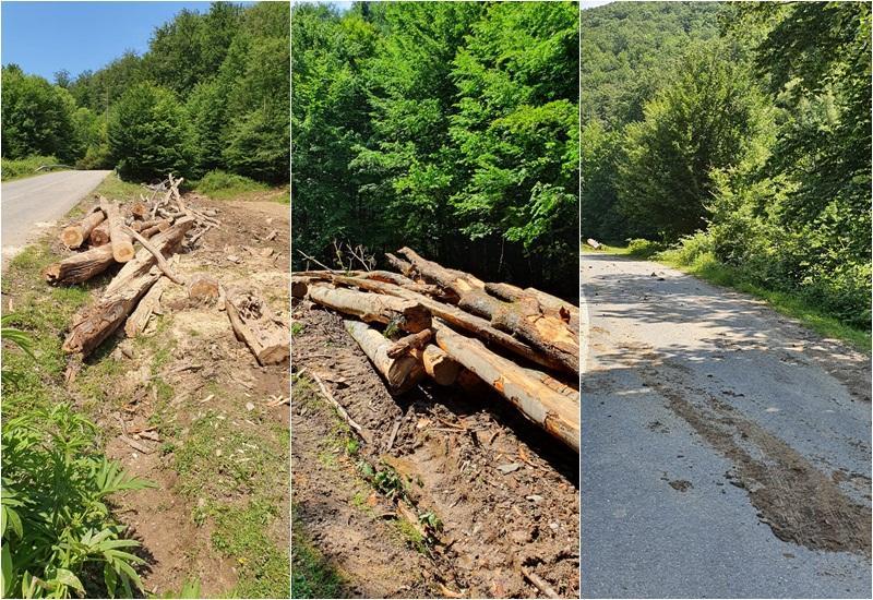 Exploatări forestiere amendate pe drumul județean Julița-Mădrigești!
