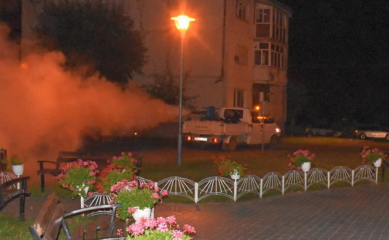 10-13 august o nouă acţiune de dezinsecţie în Arad