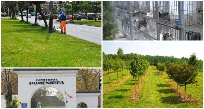 Vezi ce locuri de muncă oferă Gospodăria Comunală Arad