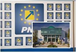 PNL Arad și-a stabilit lista candidaților pentru Consiliul Județean Arad