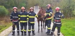 Elevii Școlii de Pompieri Boldesti au salvat un cal căzut într-o râpă din pădurea Brazii