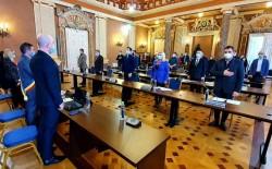 USR Arad incoerent la vot, un proiect similar l-au votat in Consiliul Judeţean dar s-au abţinut în Consiliul Local Municipal
