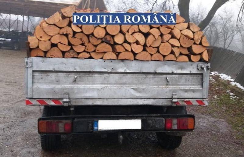 Au tăiat ilegal arbori la Gurahonț