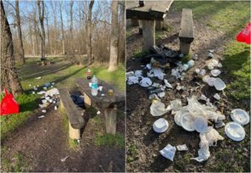 Ucigașii au pornit măcelul. Mediul din Parcul Național Lunca Mureșului este grav afectat