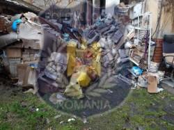 Poliția Locală Arad desfăşoară verificări în vederea respectării curățeniei în spațiile comune și a curților interioare