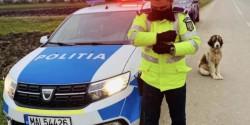 Minoră lipsită de libertate, găsită de poliţiştii arădeni