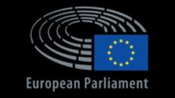Gheorghe FALCĂ a susținut o intervenție în plenul Parlamentului European privind strategia europeană pentru turismul sustenabil