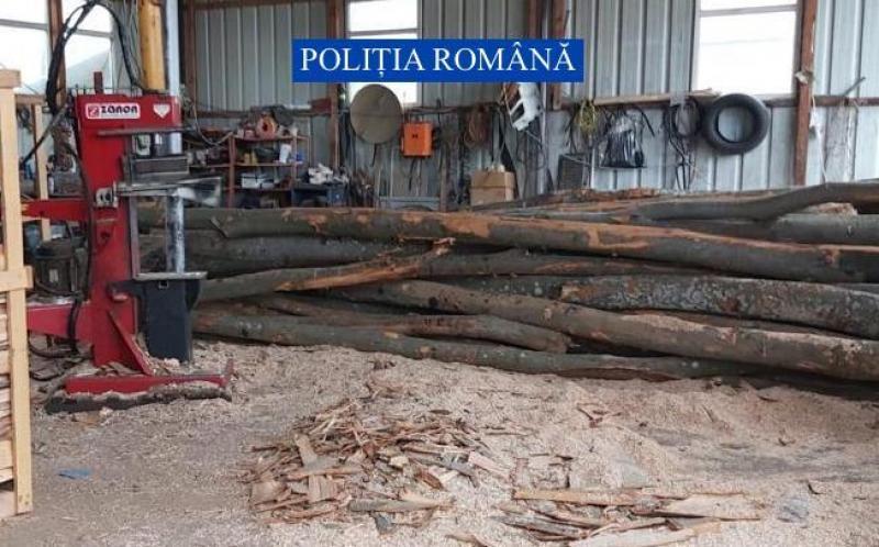 Tăieri ilegale de lemn în zona Hălmagiu. S-a lăsat cu amenzi și confiscări de material lemnos