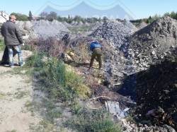 Condamnați penal și beneficiari de venit minim garantat curăță Aradul de gunoaie