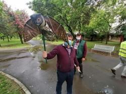 Bufniţele simulate, soluția pe care o încearcă primăria pentru a scăpa de ciorile de pe bulevard – o soluție a unui arădean stabilit în Australia