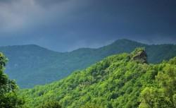 Ziua Europeană a Parcurilor marcată în cele 22 de parcuri naționale și naturale administrate de Romsilva