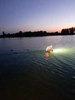 Un tânăr de 19 ani s-a înecat în lacul Ghioroc. Scafandrii i-au găsit corpul după mai bine de două ore de căutări