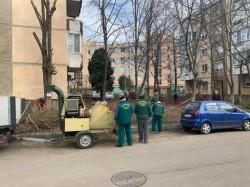 Primăria Arad informează că începe curățenia stradală