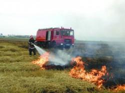Incendiu de vegetație uscată la ieșirea din Horia spre Șiria