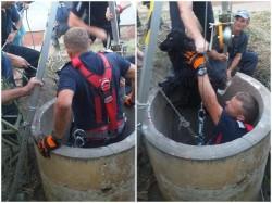 Un cățel care a căzut într-o fântână adâncă de 12 metri a fost salvat de pompierii arădeni