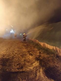 Val de incendii de vegetație uscată în județul Arad