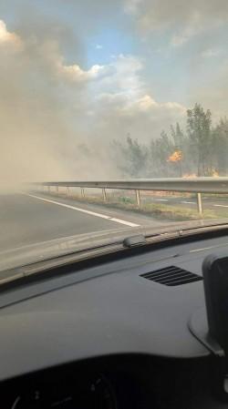 Vâlvătaie de flăcări și fum gros între Vladimirescu și Cicir. Traficul este îngreunat. Pompierii intervin asupra incendiului