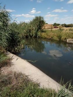 Canalul din Bujac, decolmatat