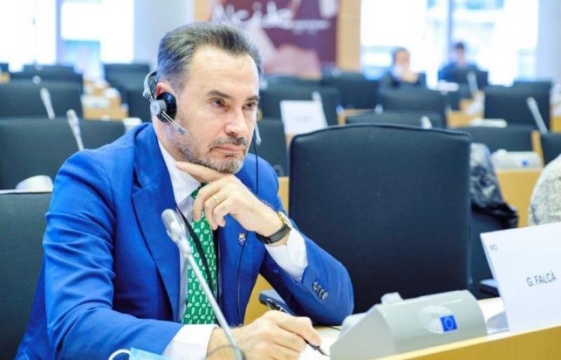 Gheorghe FALCĂ salută discursul președintelui CE din plenul de la Strasbourg