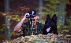 420 de posturi vacante scoase la concurs, prin încadrare directă, la nivelul Poliției de Frontieră Române