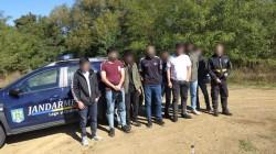 Jandarmii arădeni au depistat zece cetățeni străini ascunși într-o pădure de lângă localitatea Stejar-Săvârșin