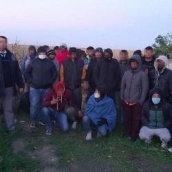 Douăzeci și șase de imigranți depistați într-un lan de porumb lângă Nădlac